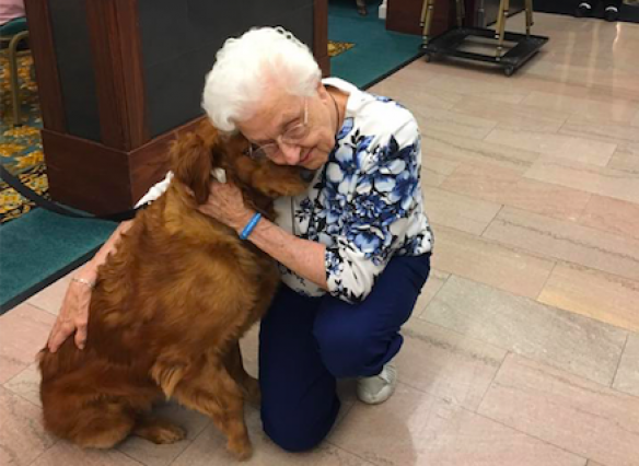 Shelby, Masonic Pathways therapy dog